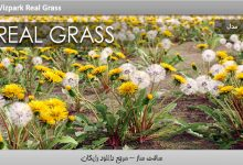 Photo of Download Free Vizpark Real Grass