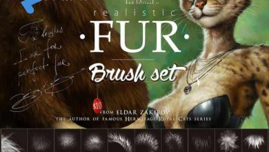 Photo of Gumroad – A Realistic Fur Brush Set of Clip Studio Paint and Photoshop
