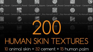 Photo of Gumroad – 200 Human Skin Textures