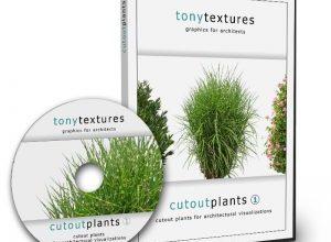 Photo of Cutout Plants V01
