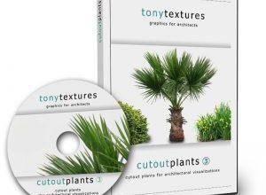 Photo of Cutout Plants V03