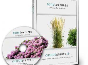 Photo of Cutout Plants V04