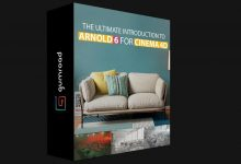 Photo of INTRODUCTION TO ARNOLD 6 FOR CINEMA 4D